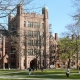 Best college admissions essay yale