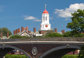 Top College & Ivy League Admissions Statistics