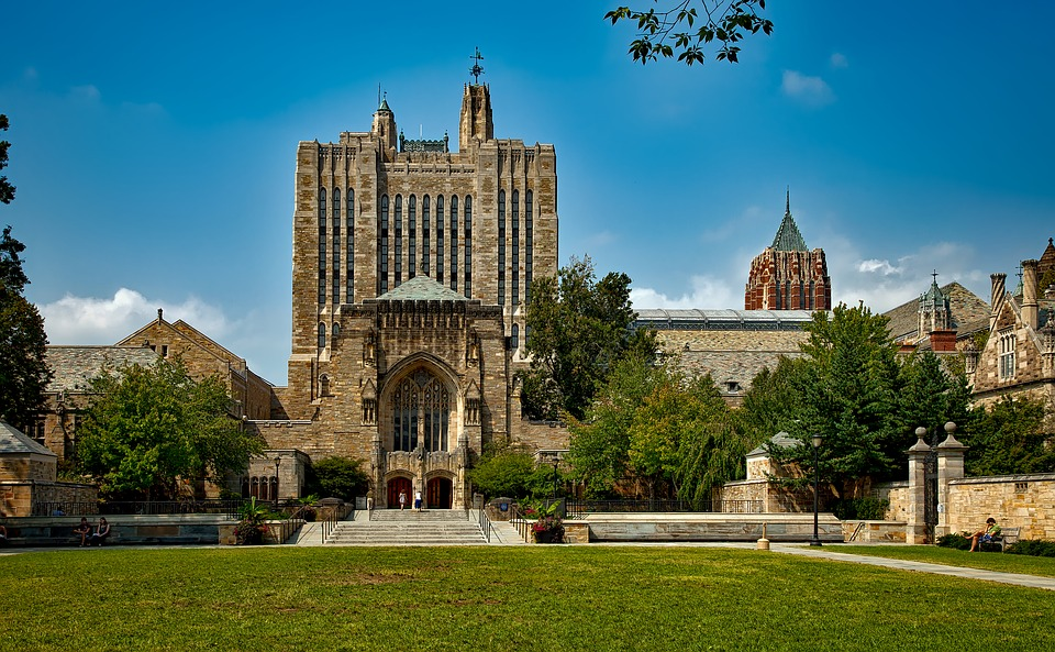 Yale admissions essay