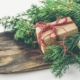 College Applicant Holiday Gift Guide
